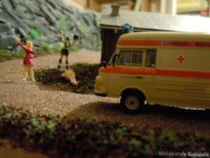 Unfall am Nationalparkhaus_1