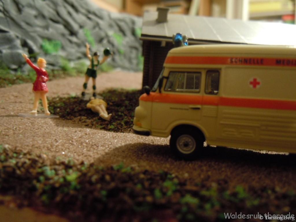 Unfall am Nationalparkhaus in Waldesruh