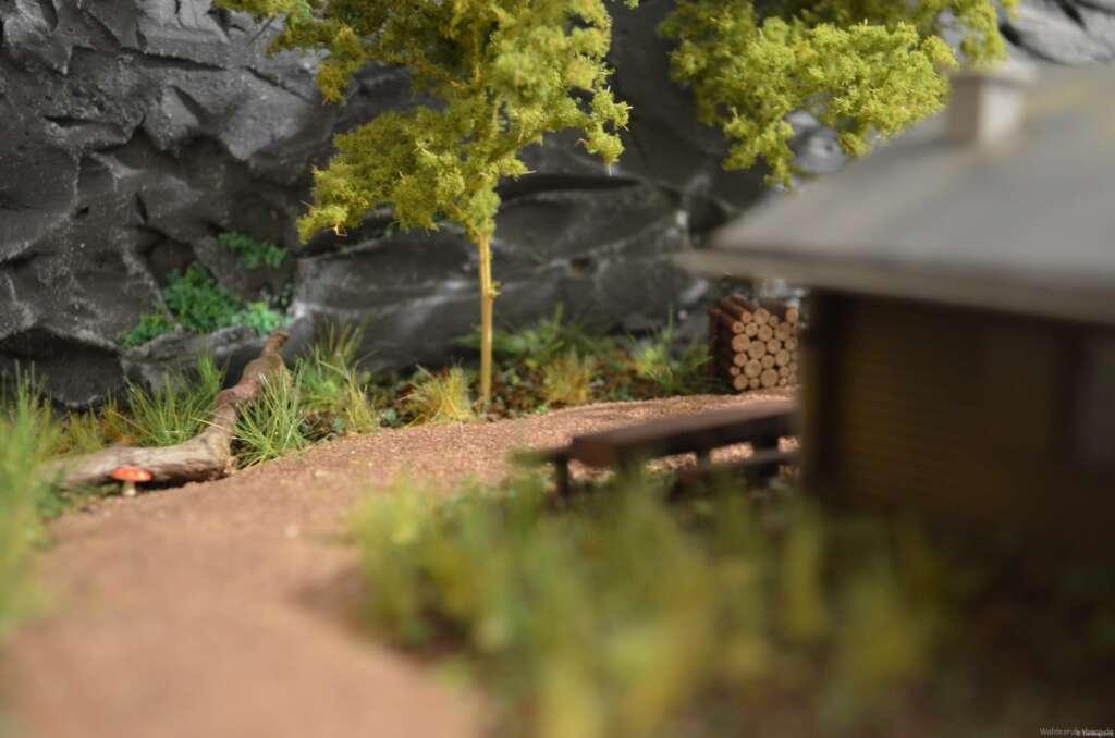 Der alte Schmugglerweg in Waldesruh - hier am Nationalparkhaus