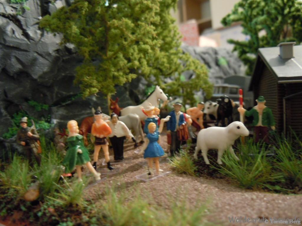 Sommermärchen in Waldesruh