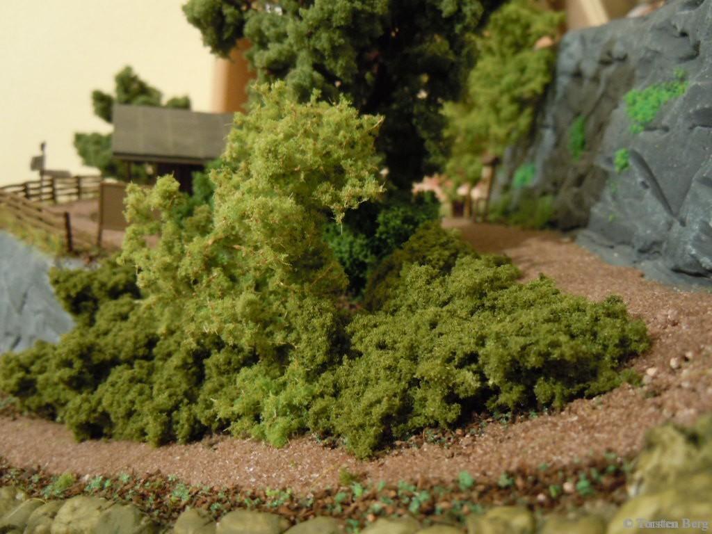 Kräuterwanderung in und um Waldesruh