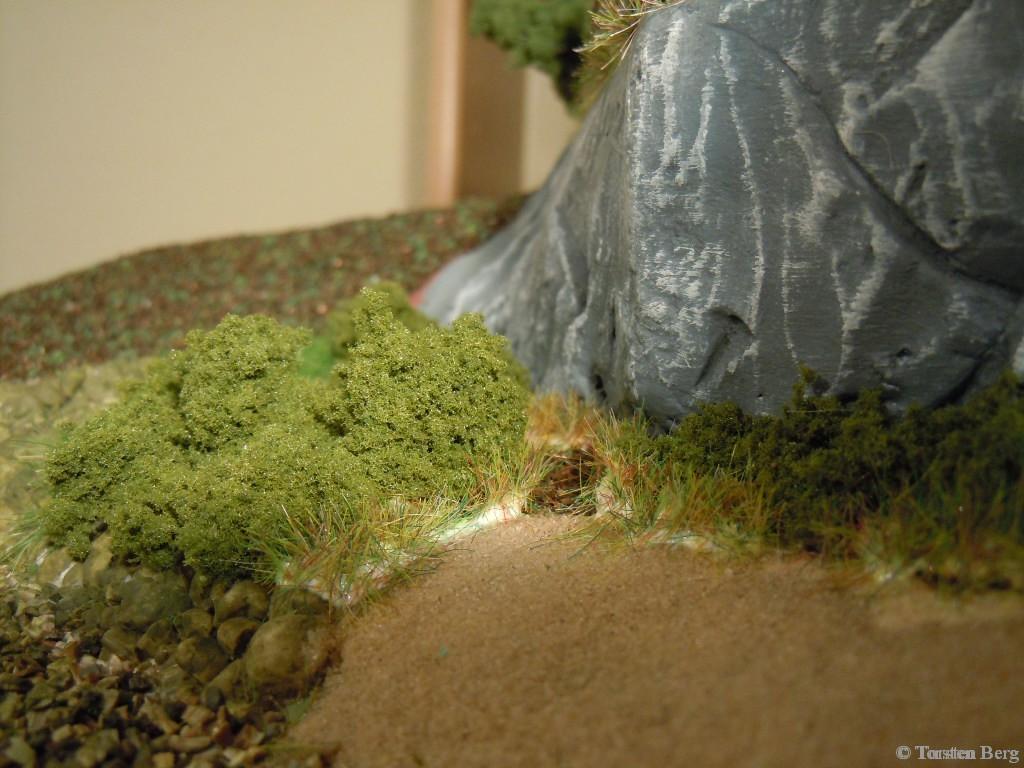 Waldesruher Kurzohrmaus wiederentdeckt!