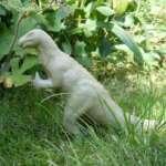 Dinosaurier aus dem Saurierpark Kleinwelka