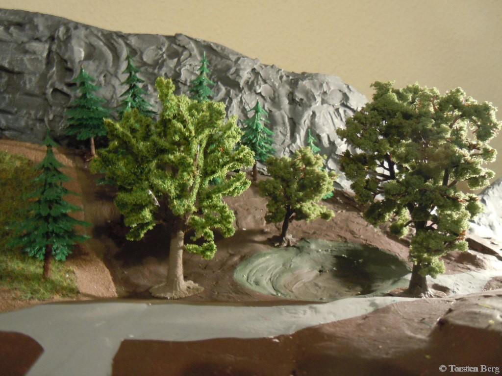 Stellprobe für den Wald rund um den Waldweiher