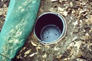 Kröteneimer an einem Krötenzaun im Harz (1991)