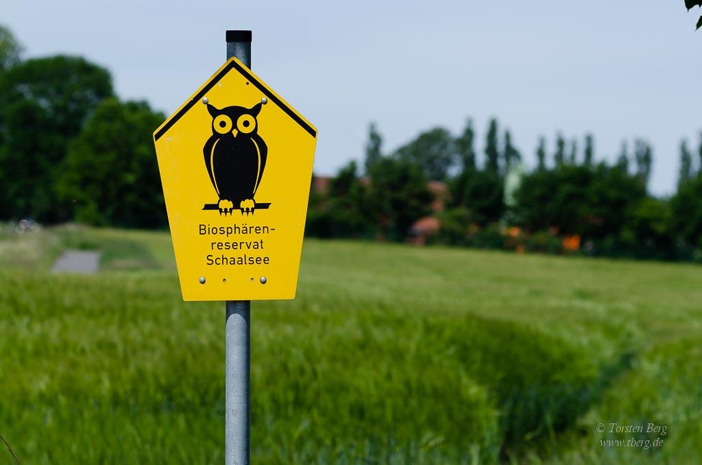 Im Biosphärenreservat Schaalsee im Nordwesten von Mecklenburg-Vorpommern