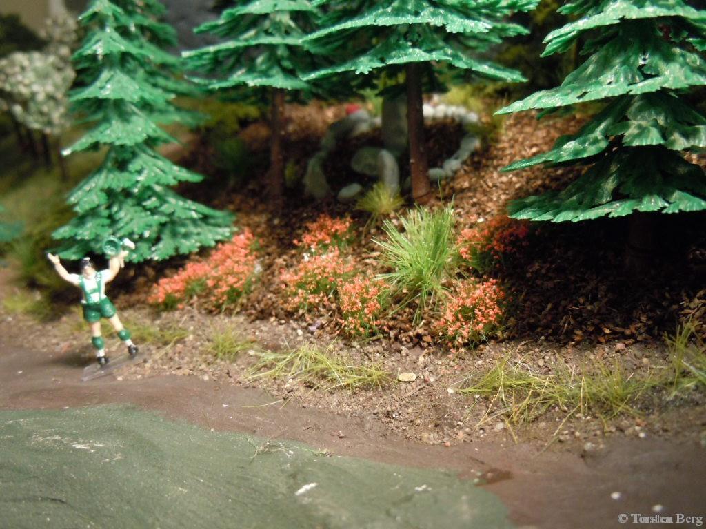Bau einer Starkstromtrasse nach Waldesruh kann beginnen