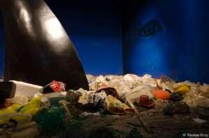 Plastikmüll in der Arktis: Installation im Klimahaus Bremerhaven