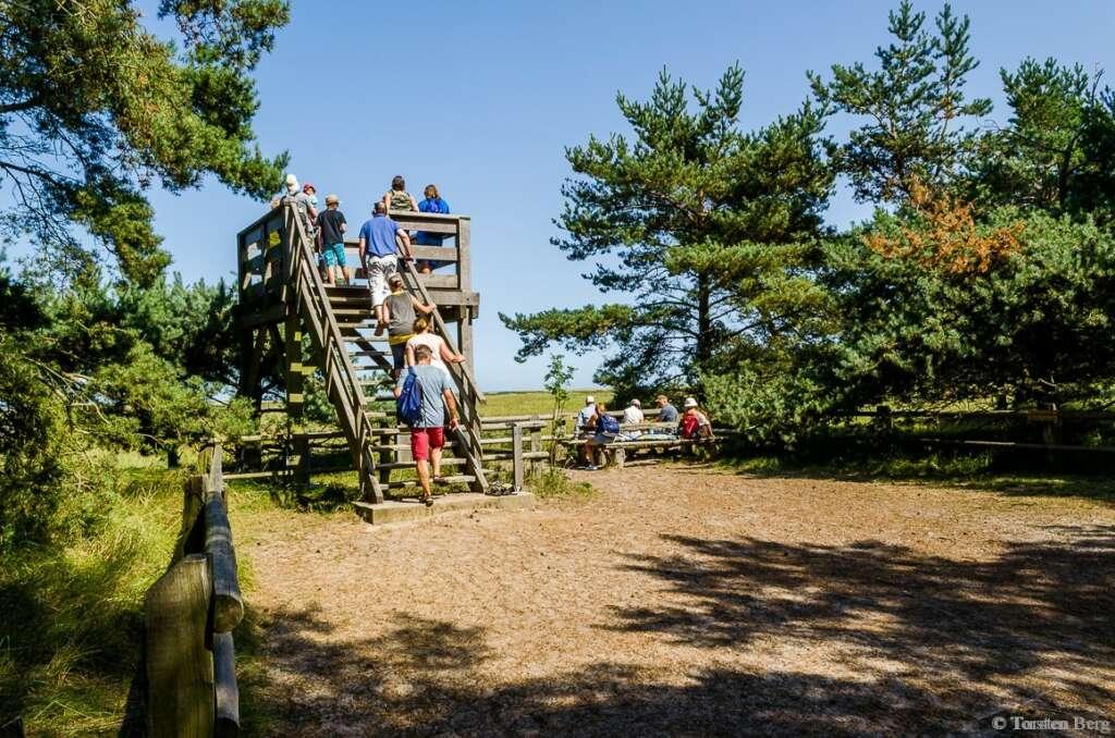 Reisen und Urlaub in Deutschland: im Nationalpark Vorpommersche Boddenlandschaft