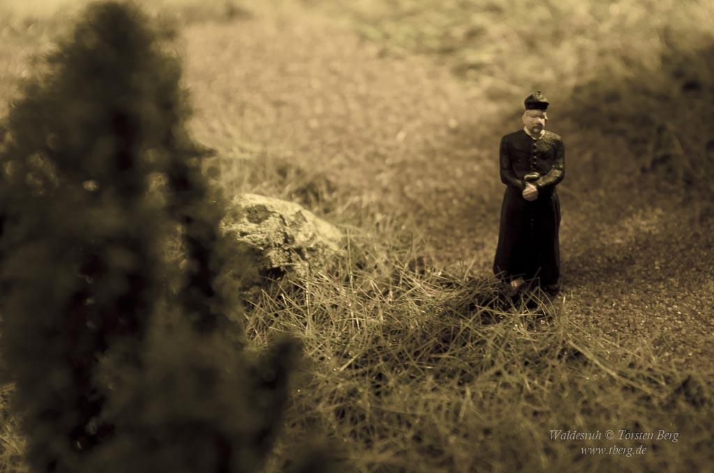Beiträge zur Geschichte: Wie Waldesruh zu seiner steinernen Kirche kam