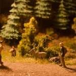 Welcher Belag für die Wanderwege um Waldesruh?