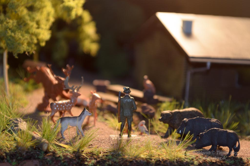 Wer ist ... ? Heute: Förster Grünrock - der Naturschützer beim Rat der Waldtiere