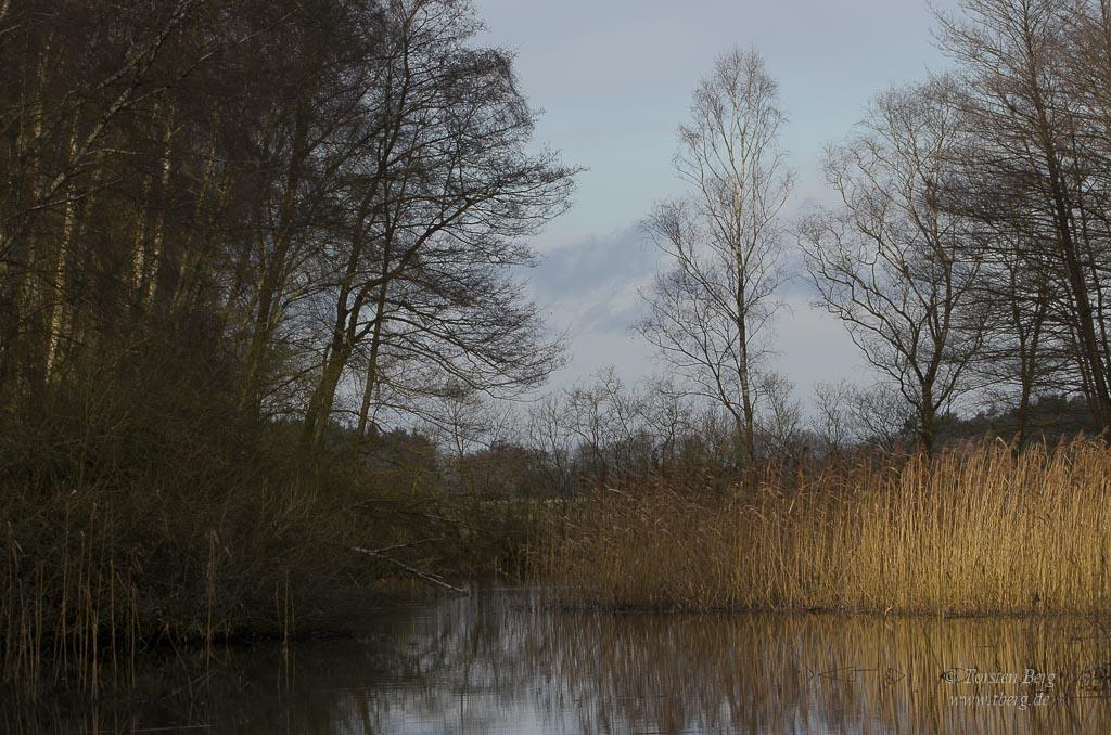 Am Neujahrsmorgen hinaus in das wilde Deutschland