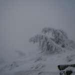 Mein Fototip zum Fotografieren im Nebel