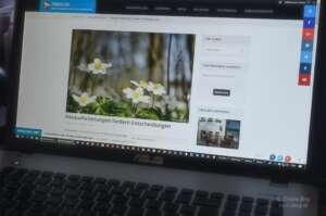 Blogsterben dank DSGVO und anderer Regularien