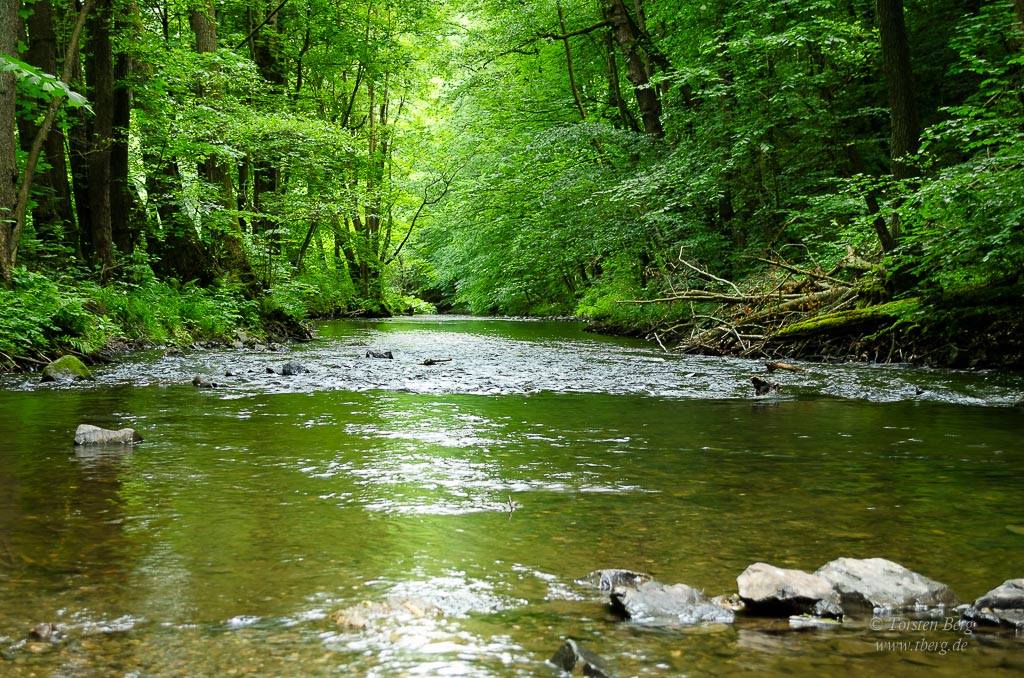 Reisen und Urlaub in Deutschland: im schönen Selketal im Harz