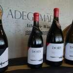 Weinprobe bei AdegaMãe
