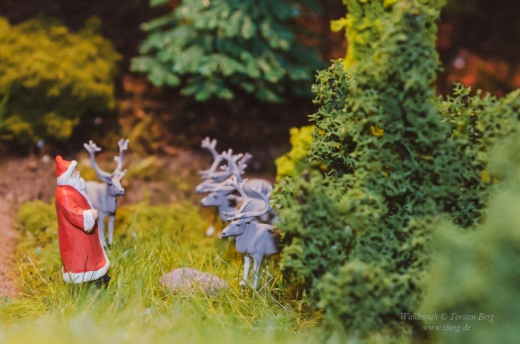 Weihnachten in Waldesruh