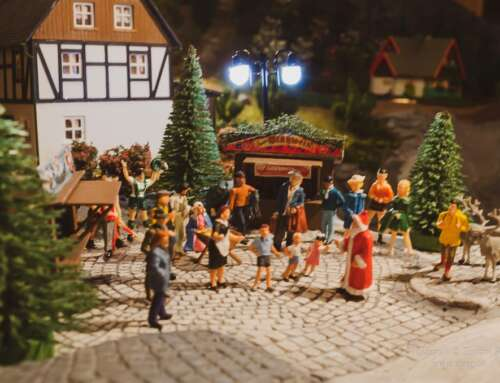 Weihnachtsgeschichte 2019: Der Wunderpilz von Waldesruh
