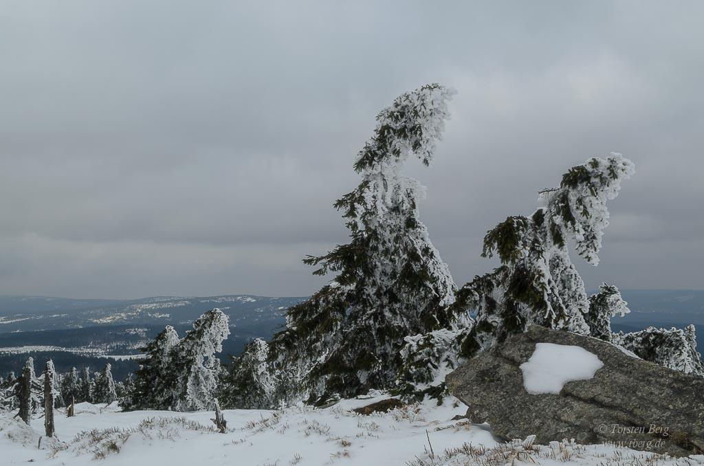 Gedanken im Dezember 2020: Weihnachten im LockDown - Winter auf dem Brocken