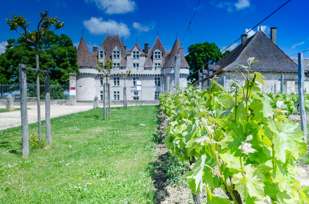 Das erste Seminfinale vom ESC und französische Weinkultur