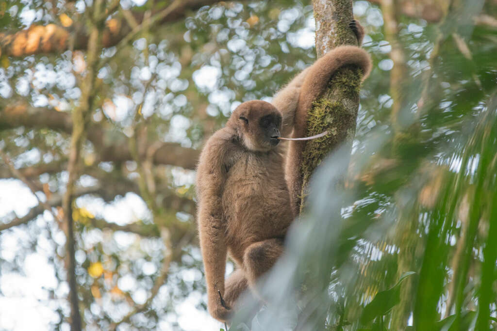 #Blogger4Natur: Tanja Heinz von Wildlife Travel