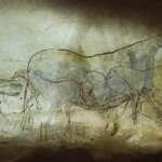 Lascaux - eine Zeitreise 20.000 Jahre zurück