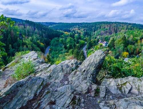 Harz oder Ostfriesland – was ist die Lösung?