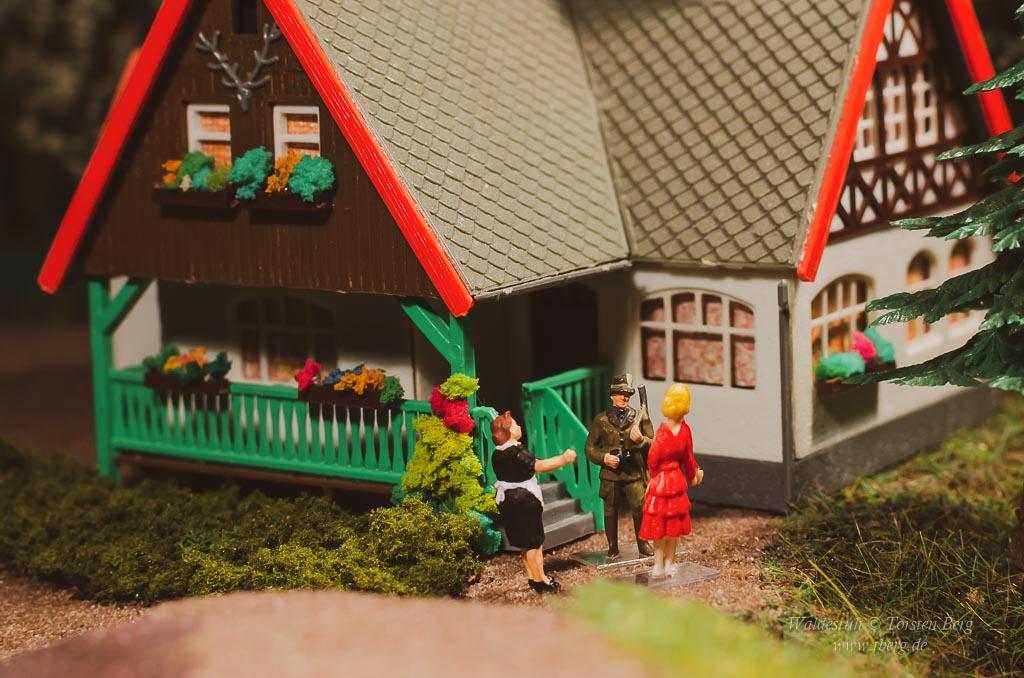 Bärenwirt's Kochbuch: Linsen-Bratlinge mit Gurkensalat