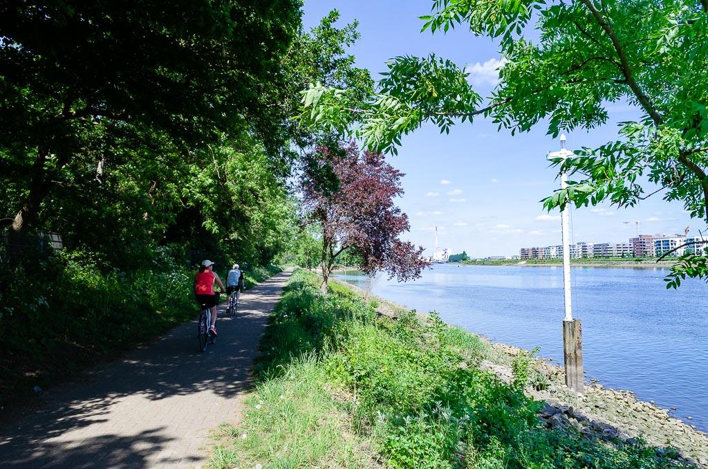 Fahrradtour Tidebiotop in Niedervieland - entlang der Weser