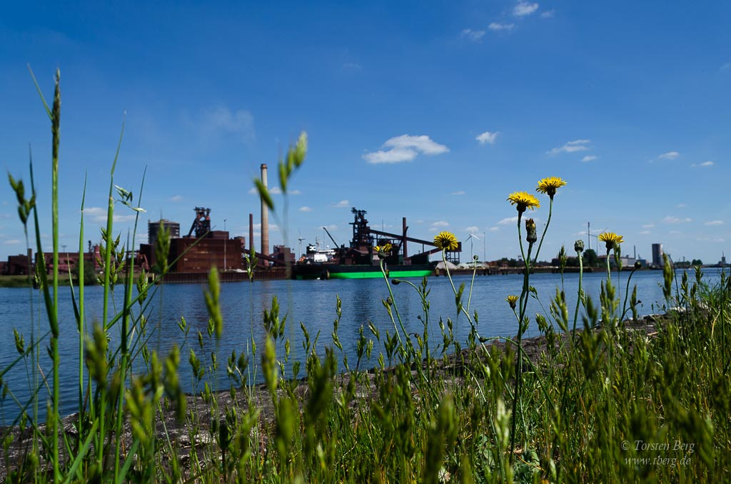 Fahrradtour Tidebiotop in Niedervieland - Industrieromantik
