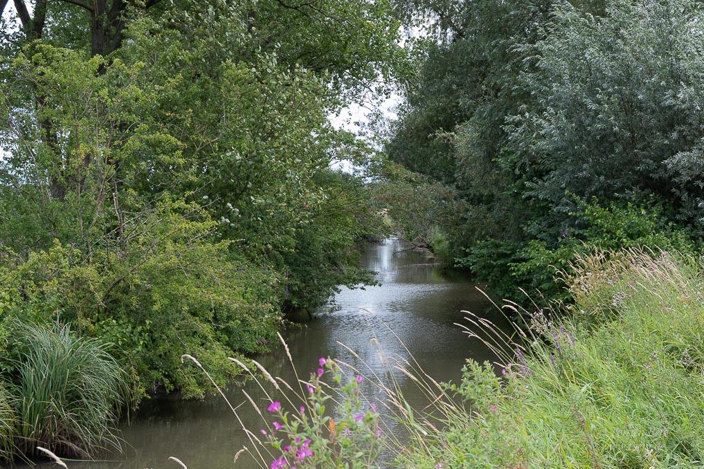 Ochtumniederung bei Brokhuchting - hier öffnet sich ein verwunschenes Flussreich