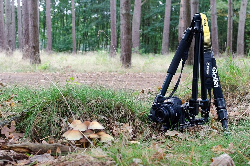 Sinnvolles Hilfsmittel zum bodennahen Fotografieren - eine Makroschiene
