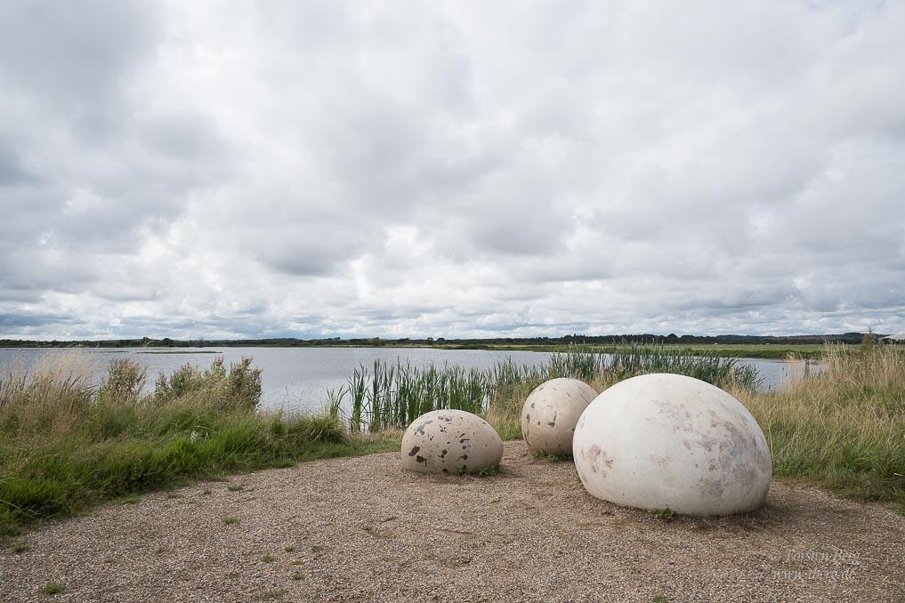 Wildlife-Safari in Lille Vildmose in Dänemark - Rastplatz am Lillesø