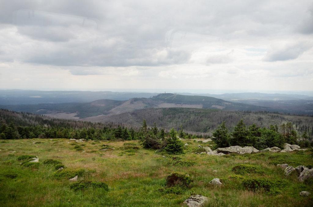 Nationalparks in Deutschland - 16 Blogger geben mir ihre Tipps! Nationalpark Harz