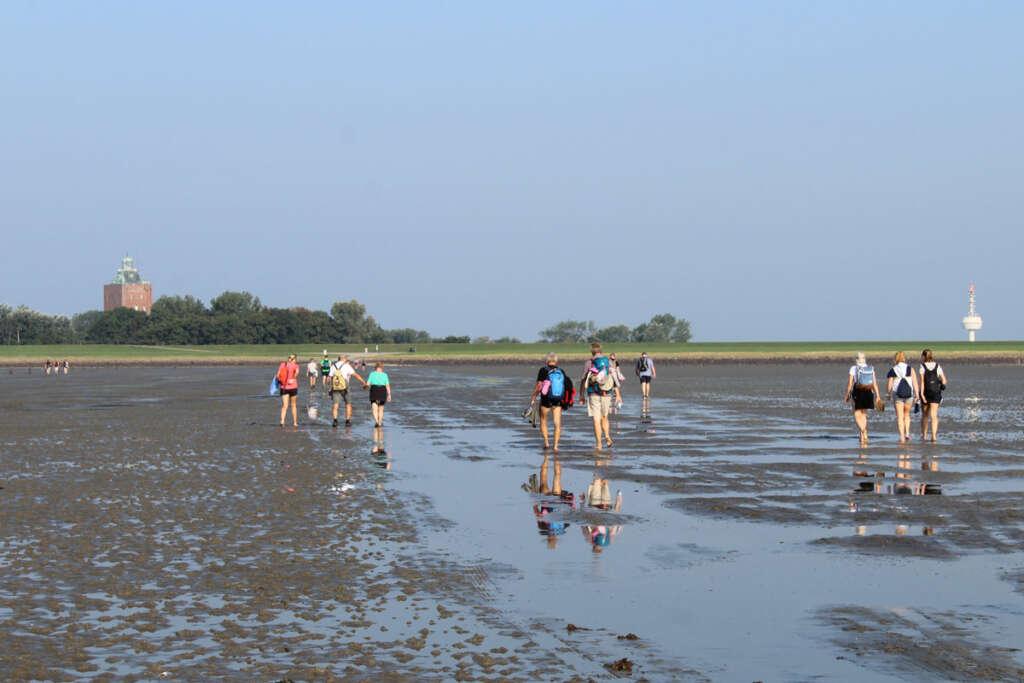 Nationalparks in Deutschland - 16 Blogger geben mir ihre Tipps! Nationalpark Hamburgisches Wattenmeer