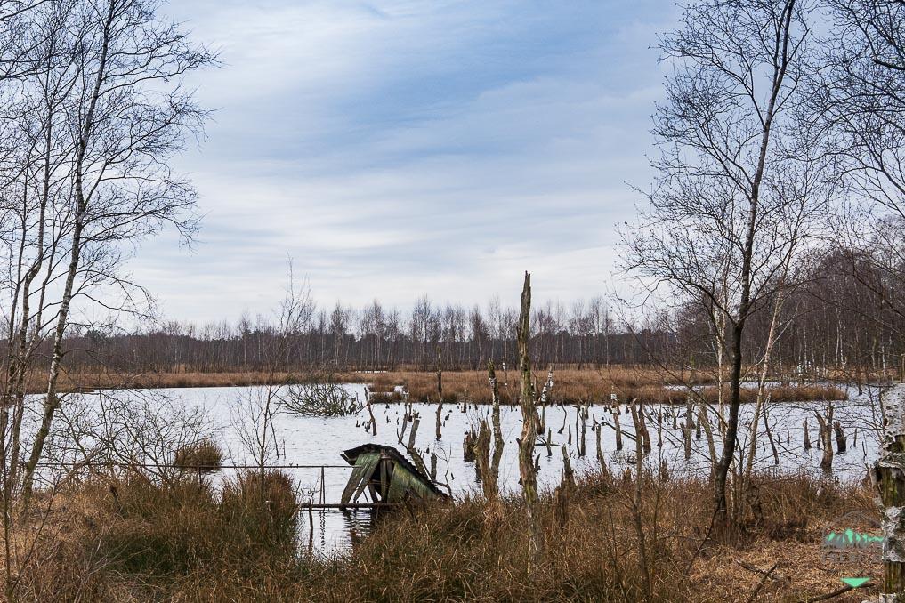 Naturschutzgebiet Hohes Moor bei Heinbockel - wir finden Überreste der menschlichen Nutzung des Moores