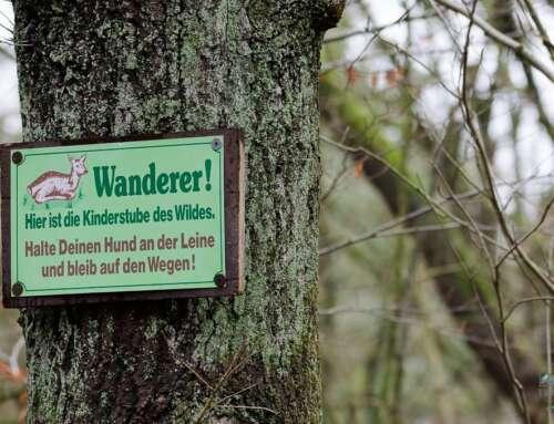 NORDPFADE – Willkommen im Flachwanderland bei Bremen und Hamburg