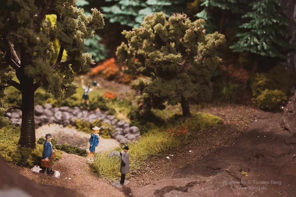 Das beschauliche Waldesruh plant ein Spass-Bad - Termin am Waldweiher