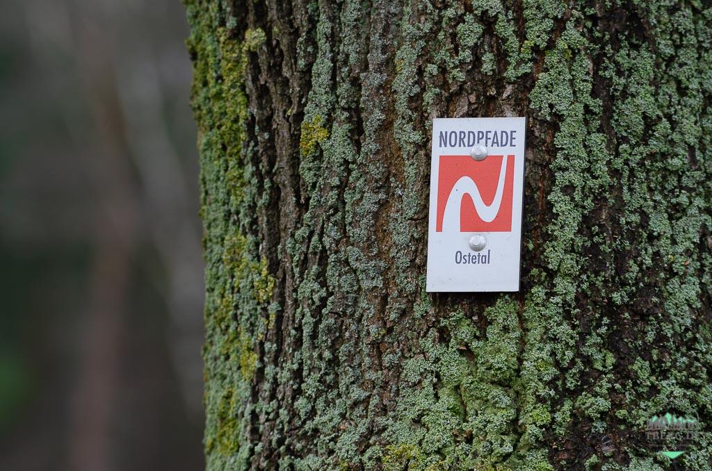 """Erkennungszeichen der NORDPFADE ist ein einheitliches weißfarbiges """"N"""" auf orangenen Grund."""