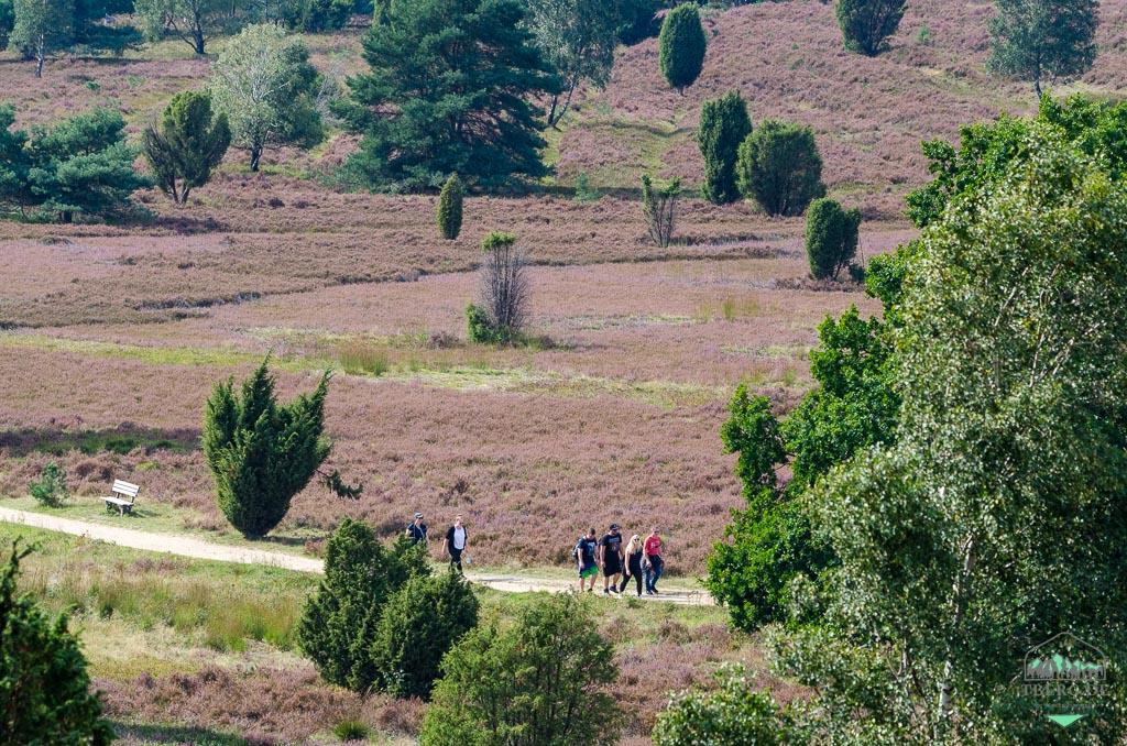 Naturerlebnisse in der Lüneburger Heide - gar nicht mehr spiessig!