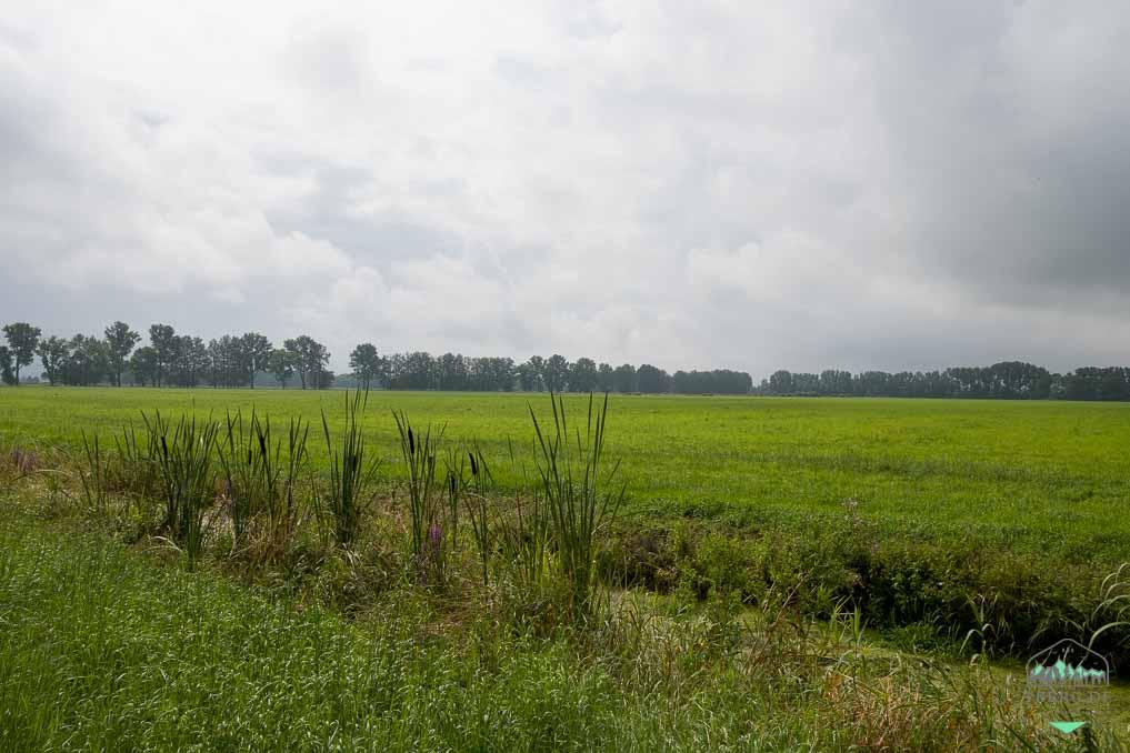 Naturerlebnisse in der Lewitz - weite Landschaften in der Wiesenlewitz
