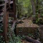 Mühlenidylle am Nordpfad Federlohmühlen