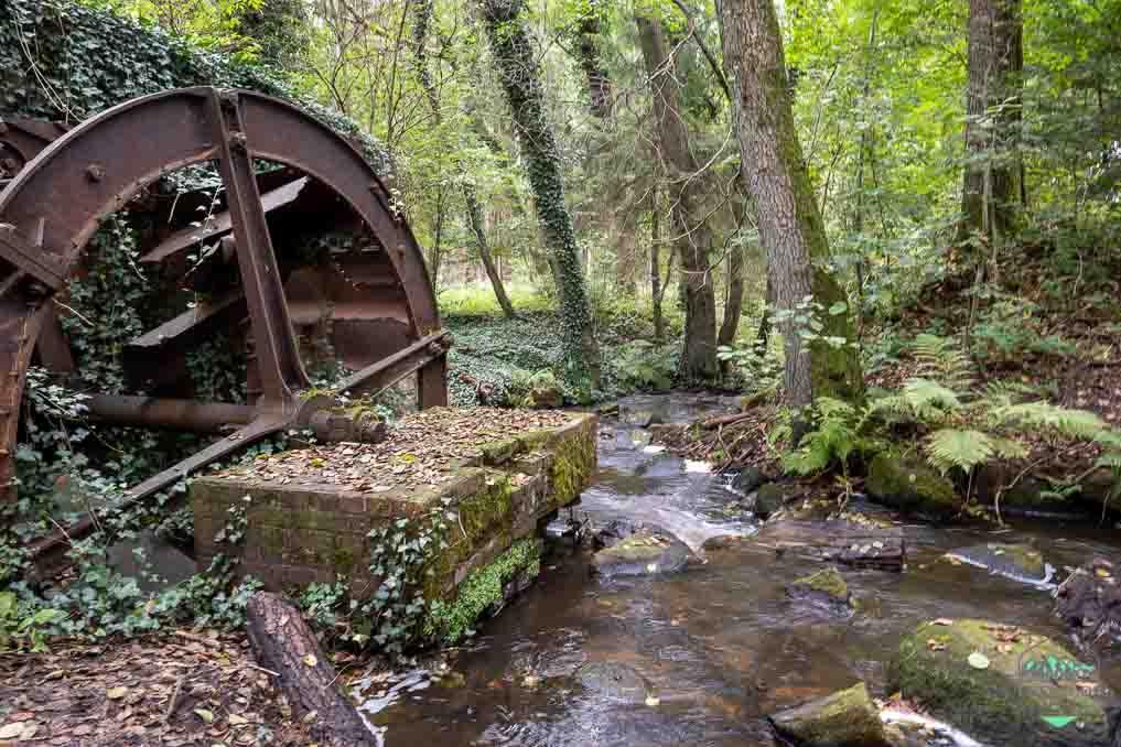 Mühlenidylle am Nordpfad Federlohmühlen - lost place gefunden